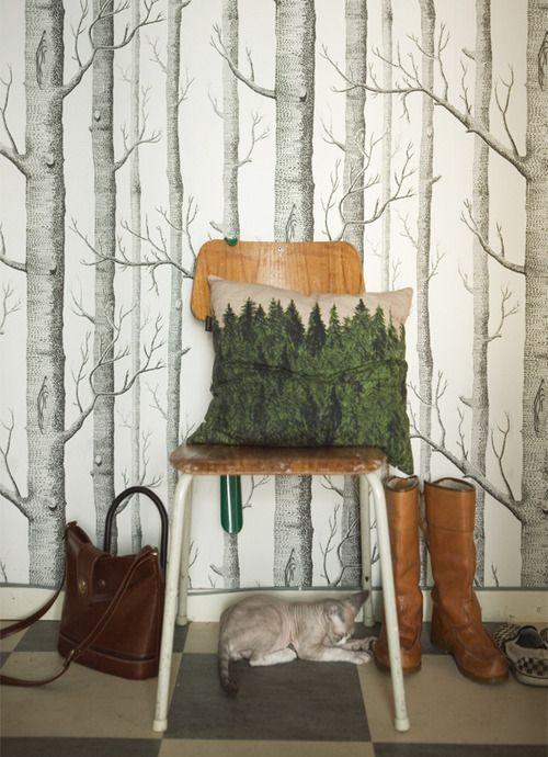 cushion forest