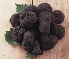 (pictured: Manijimup Truffles) Australia's South West has an abundance of fresh produce and one of the region's great pleasures is buying freshly picked fruit, vegetables or berries direct from the farm.