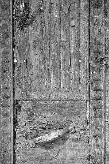 #door #wooden #wood #nature #antique #decay