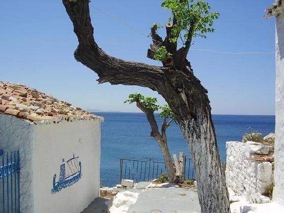 Pythagorion, Samos Island, Greece. Gorgeous, and longing to go back.