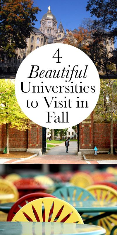 There's nothing quite like fall on campus. Here are a few schools worth checking out in autumn.