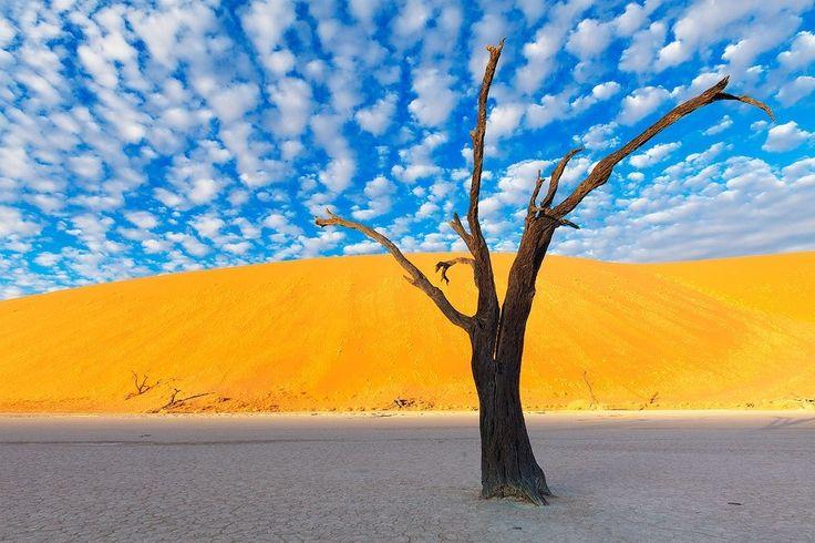 Maravilhas da Natureza - Paisagens da Namíbia 25