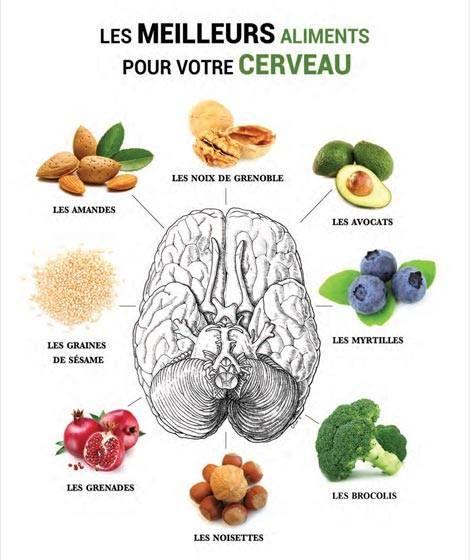 Les meilleurs aliments pour votre cerveau.