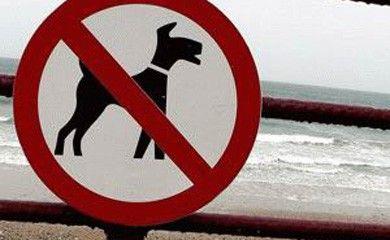 notizie animali, cane, cani, spiagge per cani, spiaggia per cani, cartello divieto spiaggia cane