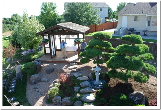 Suburban Backyard Wedding : Great suburban back yard, other great shots on the link