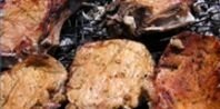 How to Cook Chicken With Brinkmann Electric Smokers & Grills | eHow.com