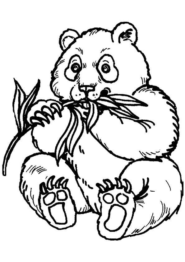 33 best coloring pages images on pinterest drawings, mandalas Coloring Worksheets of Pandas Cute Cartoon Panda Coloring Pages Panda Bear Print