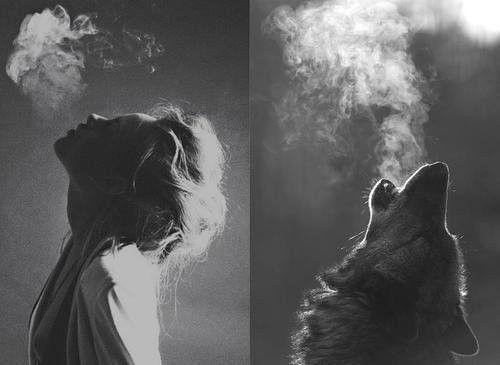 femmes qui courent avec les loups..