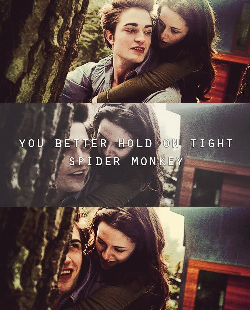 ONE OF TWO FAVORITE SCENE'S OF MINE.  BELLA AND EDWARD CLIMBING THAT TREE AND TALKING IN THE BRANCHES AND THE GAZEBO SCENE AT THE PROM ARE MY FAVORITES.