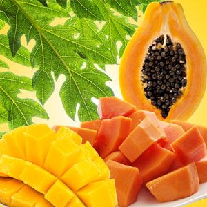 Mango Papaya Fragrance Oil:  A tropical delight! You will fall in love with this fruity blend of ripened mango and juicy papaya. Your product line is not the same without this fragrance! #fragranceoil #fragranceoils #fragrance