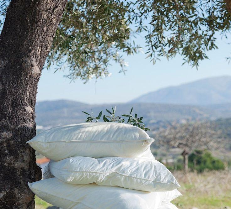 Gemütlichkeit und Luxus, von denen man nur träumen kann! Schlaf macht ein Drittel unseres Lebens aus.  Alle Zimmer im Alianthos Garden verfügen über Matratzen von COCO-MAT. Zusätzlich bieten wir eine Auswahl an Kissen, damit du dir aussuchen kannst, auf welchem du am besten schläfst.   Dreaming comfort and luxury! All Alianthos Garden's rooms have COCO-MAT mattresses and pillows. Moreover, we offer you a COCO-MAT pillow menu to choose from according to your needs.