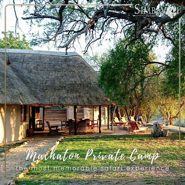 During your stay with us at Machaton Private Camp you'll have your own ethical and safety-conscious Field Guide and Tracker to create the most memorable safari experience on your game drives. . . . #Relax #Revive #Meditate #Experience #Travel #Traveling #Safari #AfricanSafari #GameDrive #Bush #Simbavati