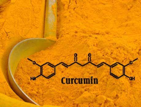 Curcumin va hoi chung Down: tac dung sinh ly cua tinh bot nghe vang