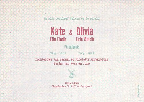 Geboortekaartje tweeling Kate en Olivia - achterkant - Pimpelpluis - https://www.facebook.com/pages/Pimpelpluis/188675421305550?ref=hl (#  meisjes - silhouet - origineel)