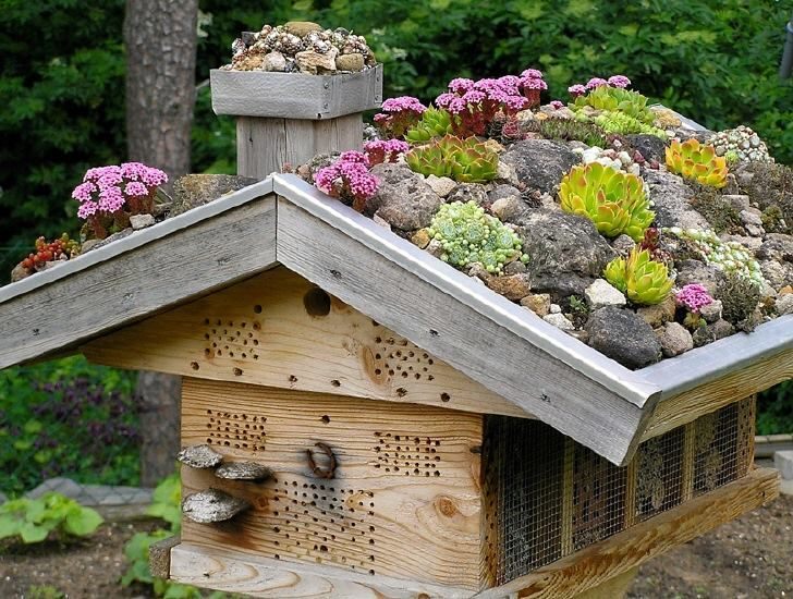 Bee hotel from Build a Bee Hotel - use wire mesh to protect from mice and woodpeckers