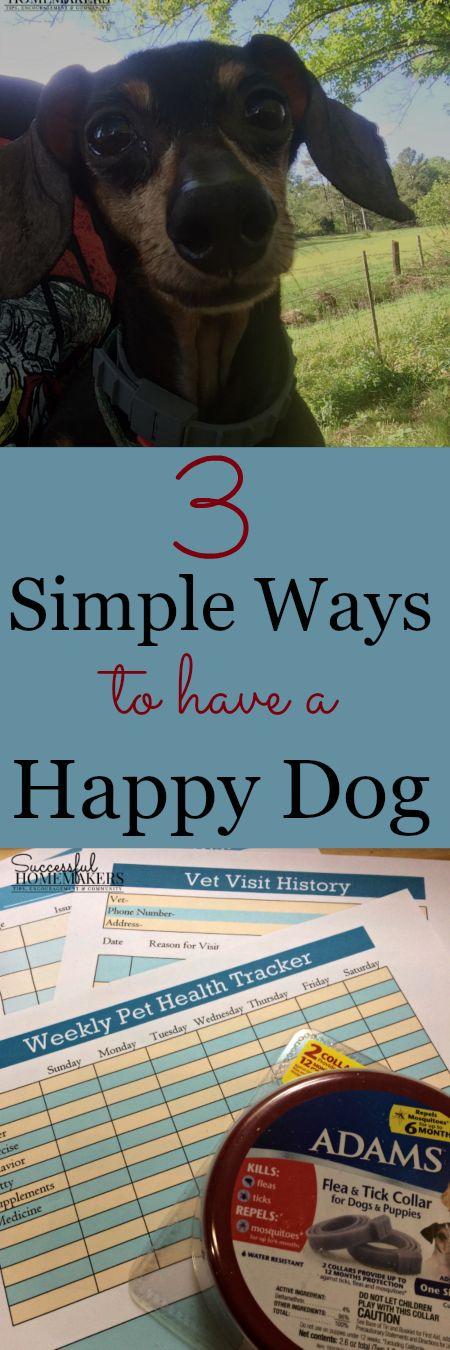 Mit AdamsPetCare, mit dem ich mich zusammengetan habe, ist es einfacher, unsere Haustiere bei Laune zu halten …  – Successful Homemakers