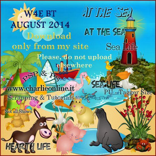 ch-Aug2014-Life'saBeachW4E