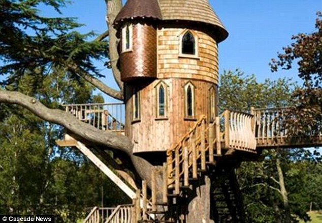 Image Gallery Of Most Expensive Tree House In The World