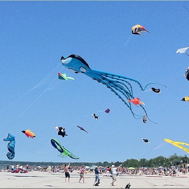 Kite Fest at Wasaga Beach last summer