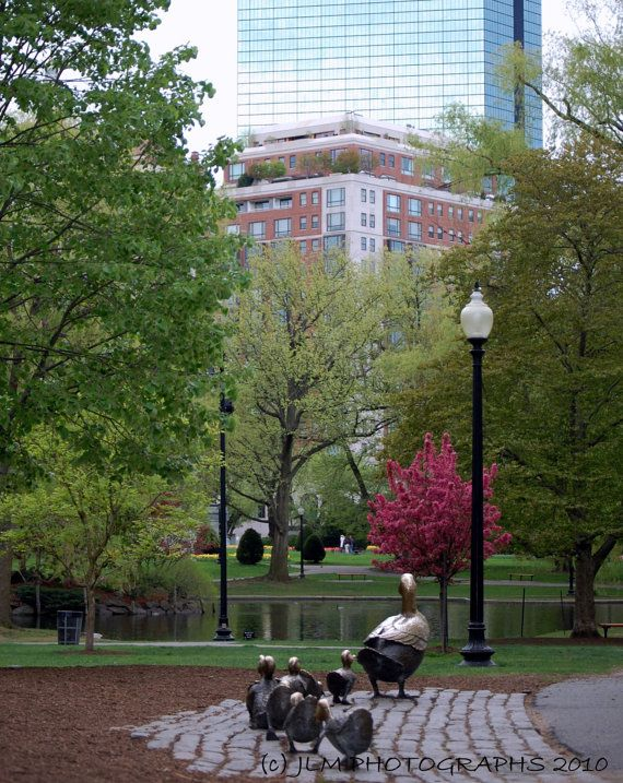 Boston Commons Park in the spring is so pretty