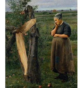 Macieira partida, 1883 de Sousa Pinto