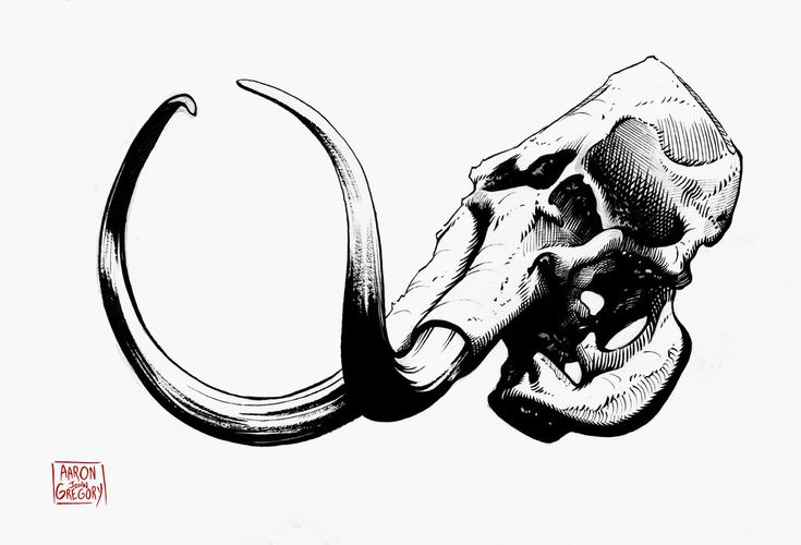 woolly_mammoth_skull_by_aaronjohngregory-d721pt7.jpg 1.024×697 píxeles