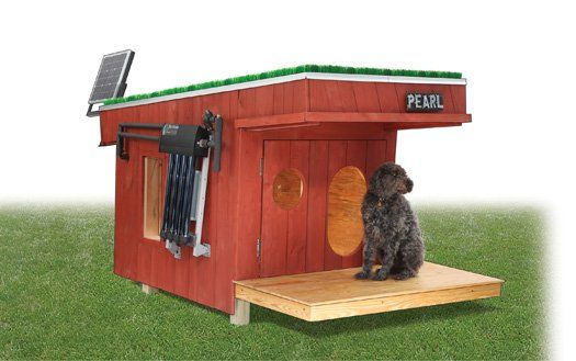 The dog house your dog needs, complete with solar heat,LED lights, and security camera.Hunting Dogs, Dogs Dogs, Doghouse, Best Friends, Dogs House, Dog Houses, Led Lights, Doggie Mansions, Dogs Castles