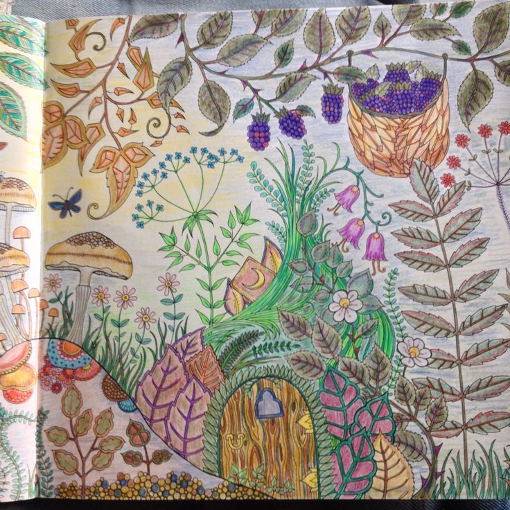 Herfst Johanna Basfordcolours By Me BasfordEnchanted GardenColoring BooksAdult