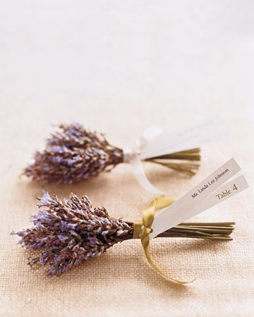 Possible idea for place cards Research as to whether it would be available in November? Get it from a garden centre? Tied with twine or lilac ribbon with name tag