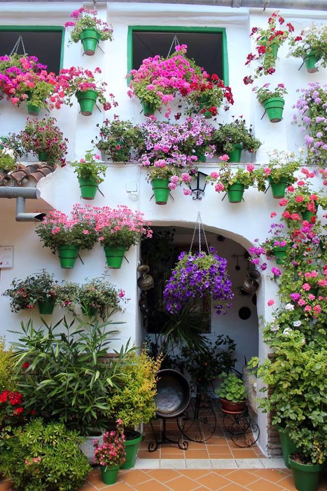 Fachada de un patio de #Córdoba, España. Las #flores decoran estos patios andaluces y le dar un olor y color especial :)