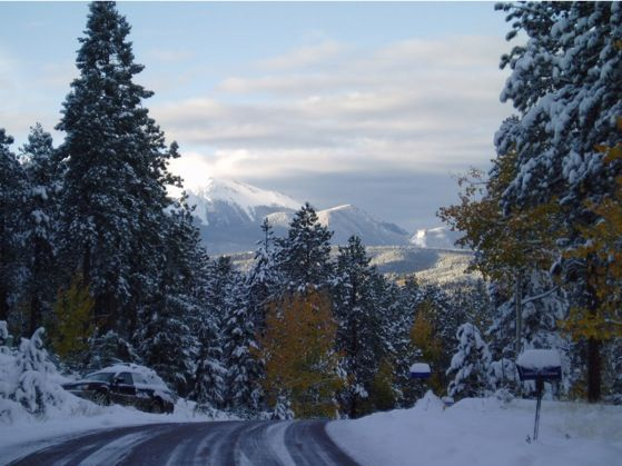 Woodland Park CO The Morning After A Fresh Dusting Of Snow Description From