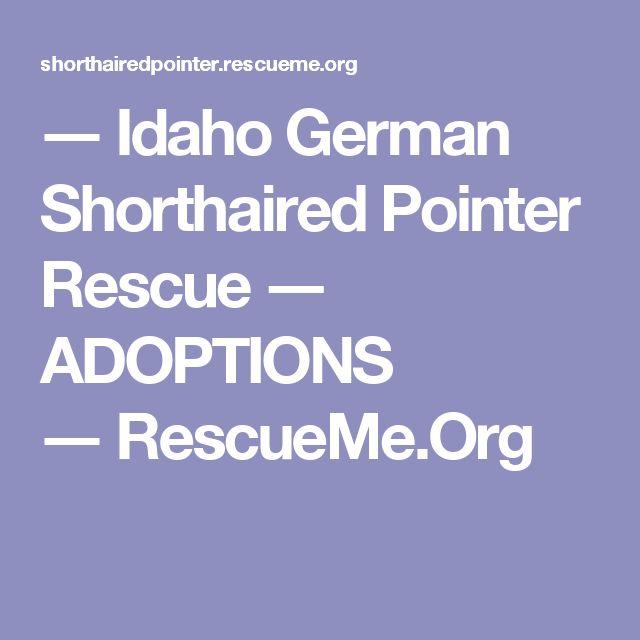 ― Idaho German Shorthaired Pointer Rescue ― ADOPTIONS ―RescueMe.Org