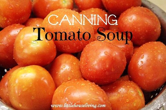 Canning Tomato Soup; sub canned tomatoes for fresh, if necessary