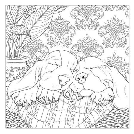 All About The Dog A Dog Lover S Coloring Book Walmart Com In 2020 Dog Coloring Book Detailed Coloring Pages Horse Coloring Pages