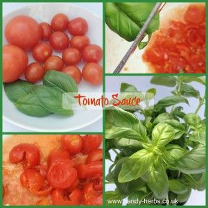 This healthy Basil and Tomato Sauce is easy to make with children and healthy too :-)