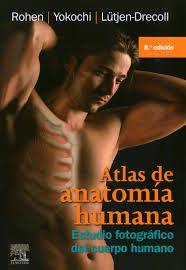 Atlas de anatomía humana: estudio fotografico del cuerpo humano / Rohen, J. W.  http://mezquita.uco.es/record=b1786068~S6*spi