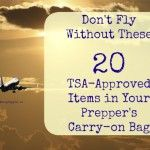 20 TSA Approved Items in your EDC bag
