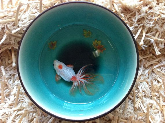 D Lifelike Goldfish In Beautiful Unique Japanese Ceramic Bowl - Incredible 3d goldfish drawings using resin