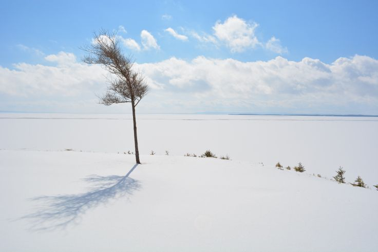 See the Bras d'Or au naturel in untouched photos on the site: Driftwood Photography