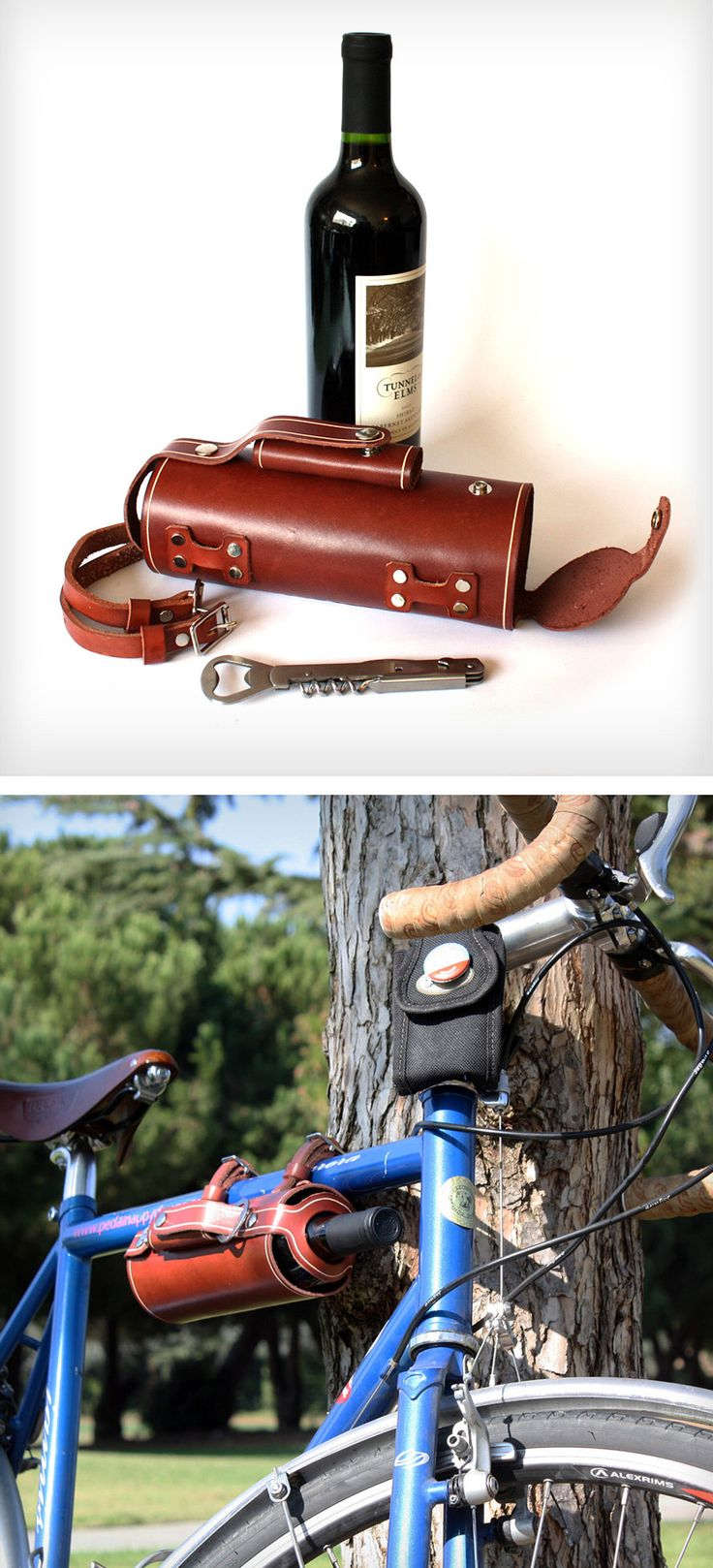 Bike-mounted wine carrier