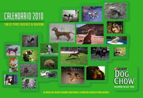Calendario. 2010.