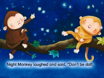 Night Monkey, Day Monkey great ideas and resources on this website