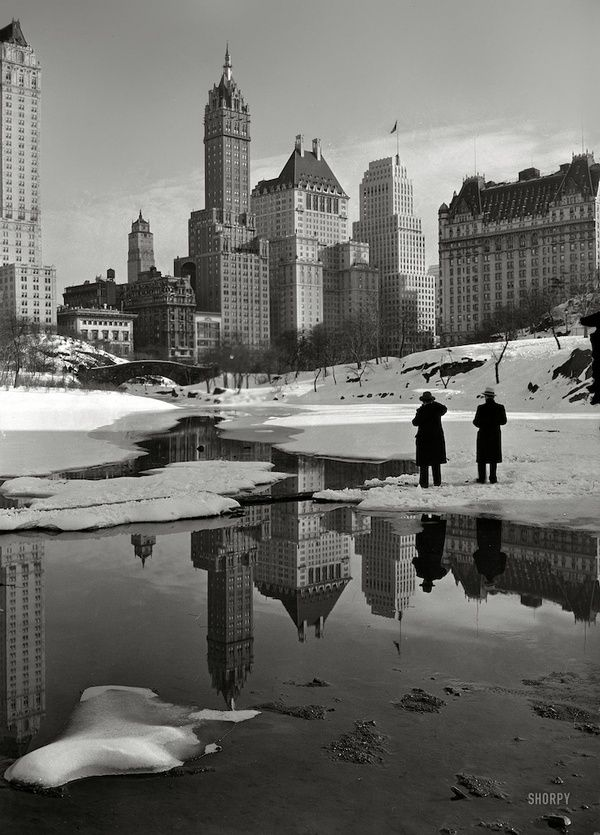 New York 1933: Books, Centralpark, New York Cities, Historical Photo, Central Parks, Palaces, Plaza Hotels, New York City, Newyork