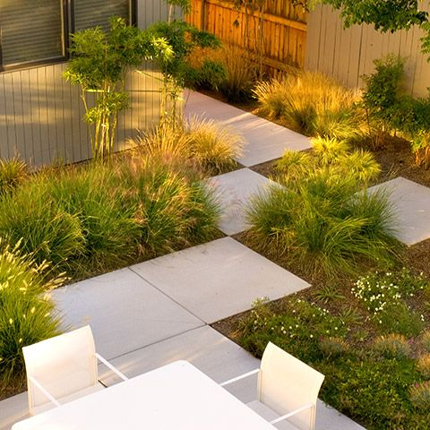 247 best images about modern grass gardens on pinterest