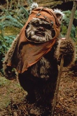 I love Ewoks, they're cute and deadly all in one package of fur.