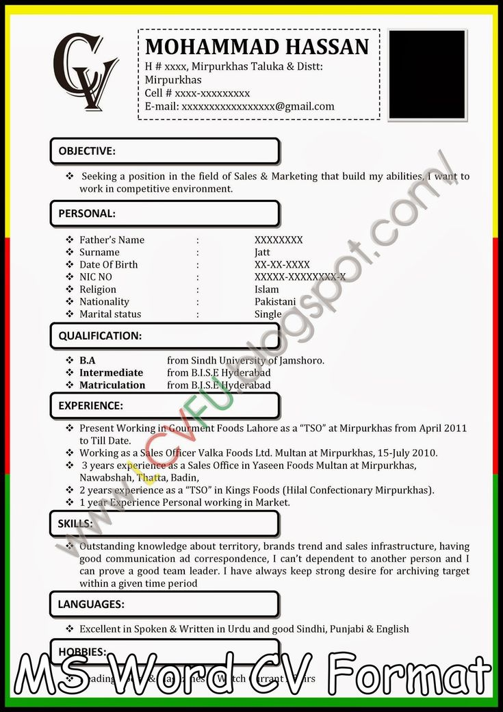 The  Best Cv Format Sample Ideas On   Cv Format For
