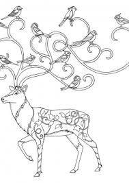Картинки по запросу олень