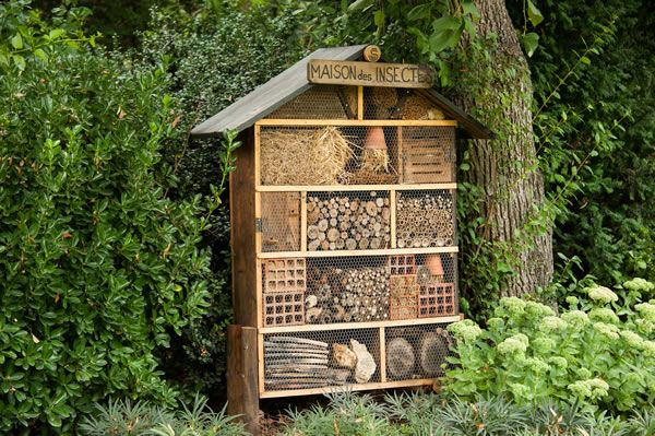 Les 53 meilleures images du tableau les animaux du jardin sur pinterest animaux sauvages - Hotel a insectes nature et decouverte ...