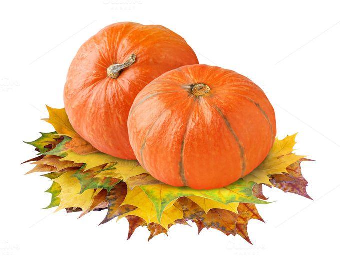 Pumpkins on transparent background by Fruits+Veggies on Creative Market
