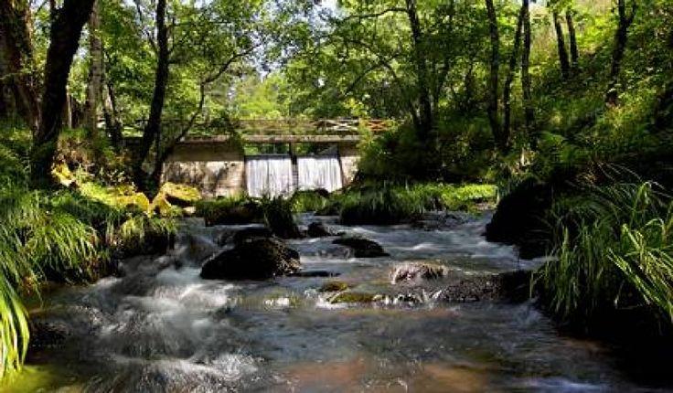 Os Sete Muíños y su ruta es uno de los lugares más emblemáticos del concello de Guitiriz. #CasadoRoble #Lugo #Galicia #Guitiriz #casarural #peregrino #naturaleza #Relax #paz #turismorural #caminodesantiago #CaminoNorte #CaminodelNorte #peregrinos #buencamino #Camino #Spain #Pilgrim #스페인 #순례자 #otoño #autumn #automne http://www.casadoroble.com/os-sete-muinos